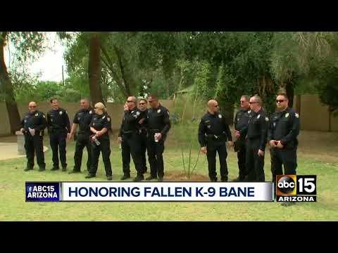 Top stories: Arizona teachers walkout; Phoenix police honor fallen K-9; Warm weather continues