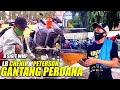 Perdana Lovebird Chenil Dan Peterson Milik H Sigit Wmp Turun Lomba  Mp3 - Mp4 Download