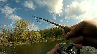 Рыбалка - озеро под Киевом / район села Музычи
