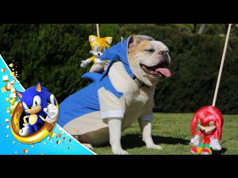 Sonic The Hedgedog: Act 4 (Finale)