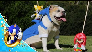 Sonic The Hedgedog Act 4 (Finale)