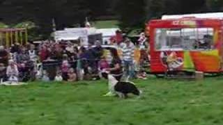 Dog Obedience At Hayfield Show Derbyshire