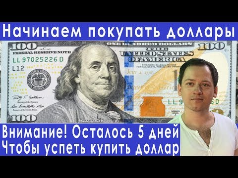 Когда покупать доллары валютный рынок для начинающих прогноз курса доллара евро рубля на август 2019