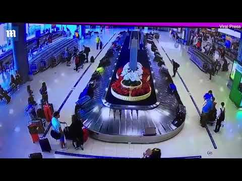 Serial suitcase thief caught at an airport stealing luggage