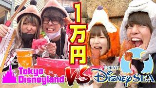 【対決】ディズニーランドとシーで先に1万円企画成功させたチームの勝ち!!【青ラブ】
