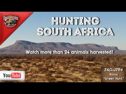 South African Hunting- Plainsgame & Big game Safari