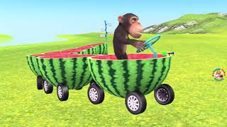 funny monkey drives watermelon train (🐒for kids🐒)