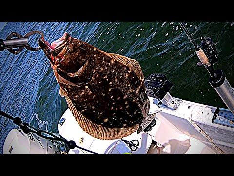 Nearshore Ocean Flounder Fishing  Oak Island, Nc