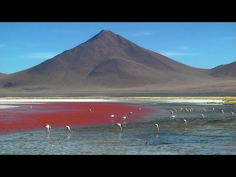 Bolivia Altiplano & Salar de Uyuni  in three days in HD