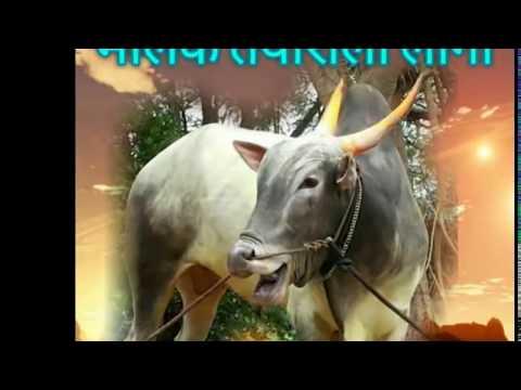 Lok geet Sarja Raja chi jodi 1