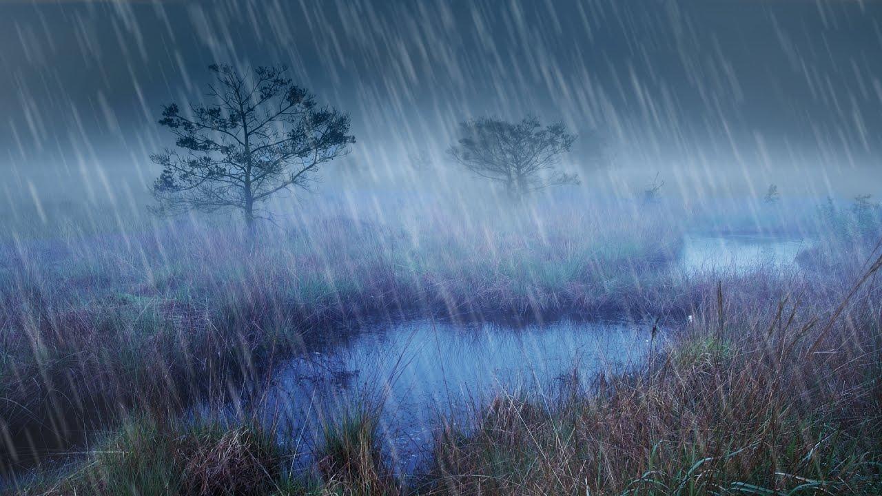 Free Rain Sounds Sleeping