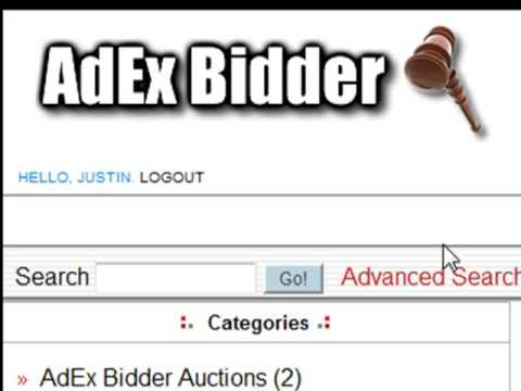 How to use the AdEx Bidders auction site
