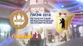 'Первый Ярославский' - все о главных событиях Петербургского экономического форума