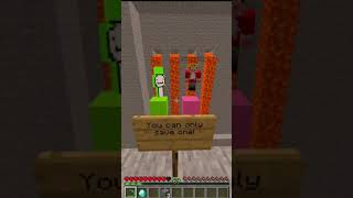 Minecraft: If saving between Dream and Technoblade was a choice...