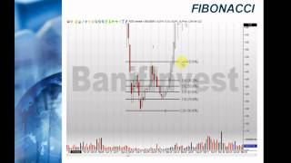 O Estudo de Fibonacci e Ondas de Elliot