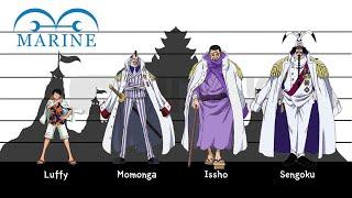 One Piece | (Marine) Charactars Height Comparison