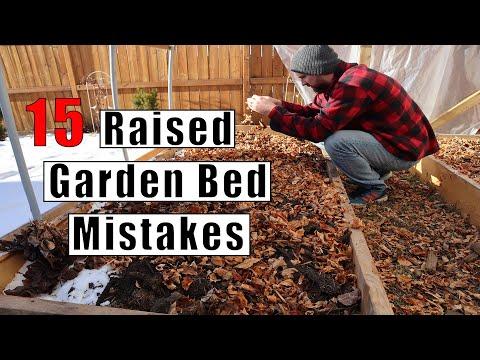 15 Raised Garden Bed Mistakes Every Gardener Should Avoid