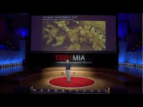 TEDxMIA - Colin Foord - A Hybrid Future - The Corals of Miami