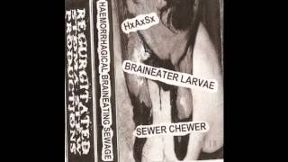 Sewer Chewer - Enema