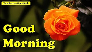 good-morning-beautiful-with-images-photos-gif-wallpapers-whatsapp-download-quotes-wishes