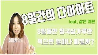 단기간 살빼기 청국장 다이어트 8일 리얼 후기