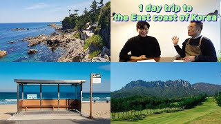 1day trip to the East coast of…