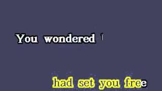 DK090 14   Williams, Vanessa   Save The Best For Last [karaoke]