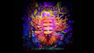 Shpongle - Museum of Consciousness [Full album]
