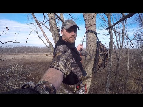 BUCK FIGHT (Controlled DEER Hunt In Ohio) Saddle Hunting
