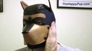 Mr S Leather Dog Mask
