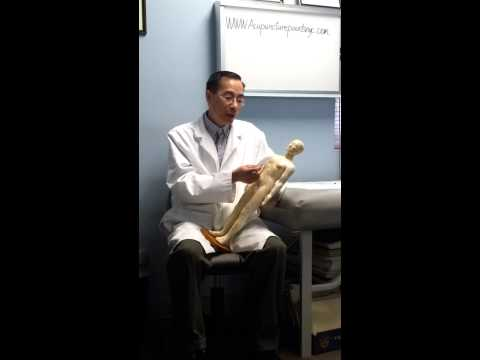 Acupuncture NYC Licensed Acupuncturist Dr Frank Zhao talk about his acupuncture expertise experience