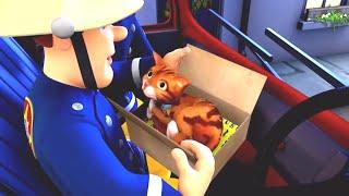 Feuerwehrmann Sam 🔥Katze im Feuerwehrauto 🚒 Cartoons für Kinder