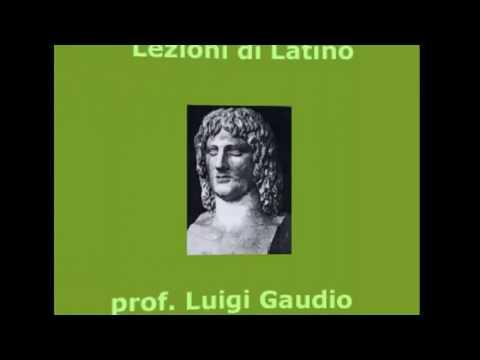 Nomi irregolari terza declinazione latino dating