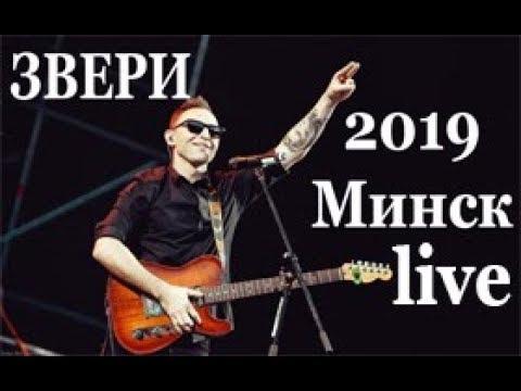 Звери  Live | выступление в Минске  2019