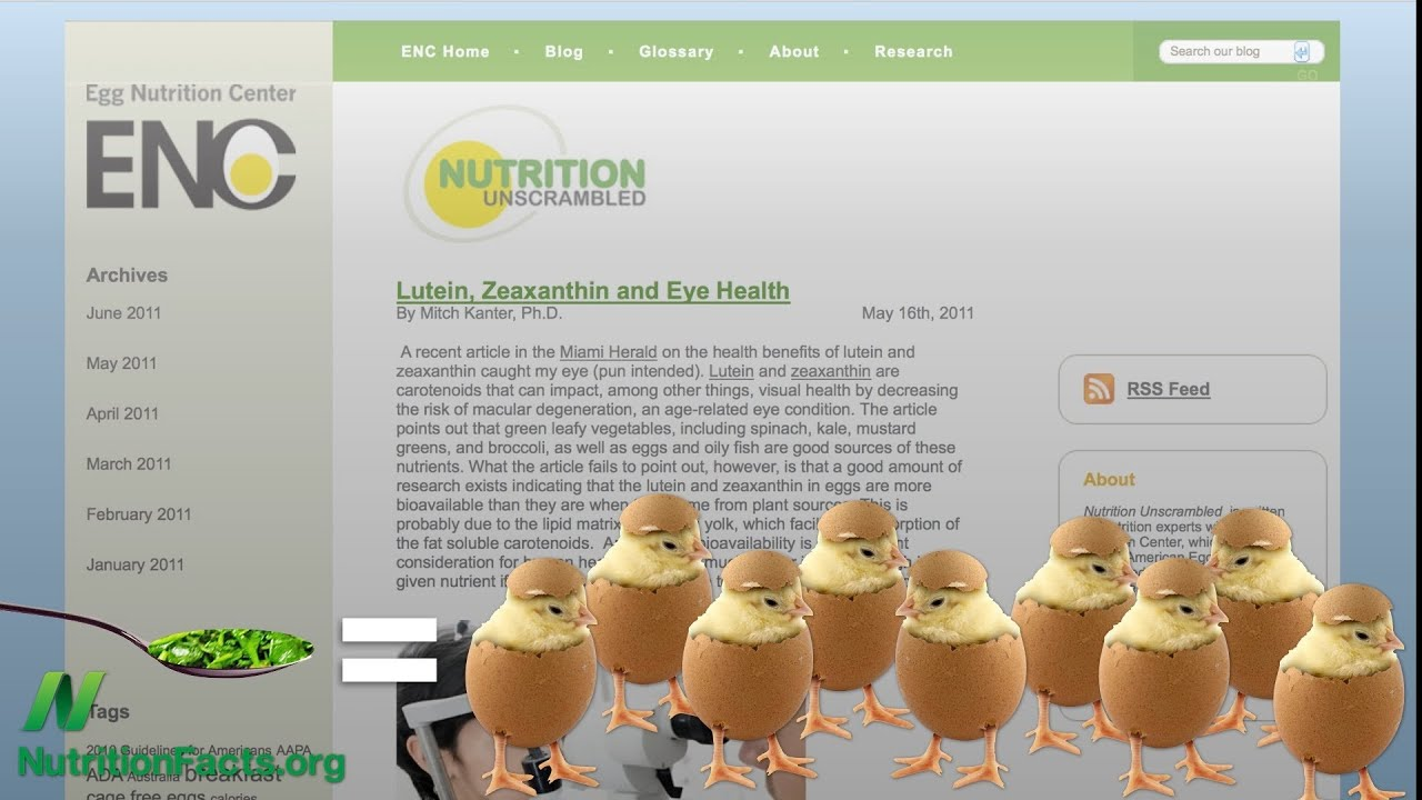 Egg industry blind spot