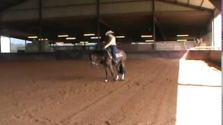 copy of axl rows 2012 aqha gelding ranch riding pattern