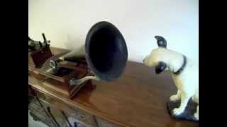 "Victor Z phonograph plays ""Uncle Josh at the Circus"""