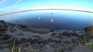 ПРИРОДА СЕВЕРА.ЛЕТО.#природа#хота#рыбалка#север