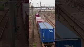 貨物列車 2062レ EF66-27 2019/06/07 花月園前踏切
