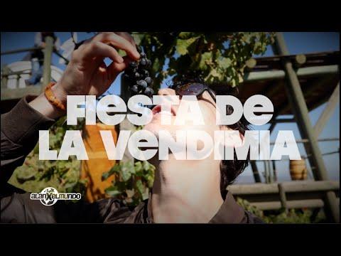 Vino A Tomar Vino | Chile #12