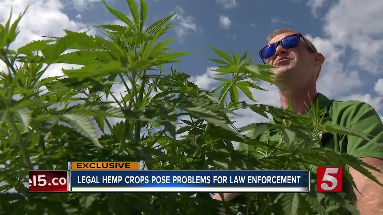 law enforcement problems