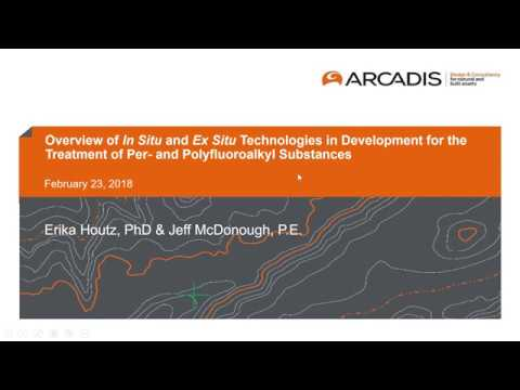 Overview of In- and Ex-Situ Technologies in Development for the Treatment  of PFAS