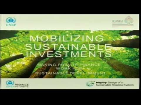 Symposium: Mobilizing Resources for Sustainable Investments - French Channel - Room 1
