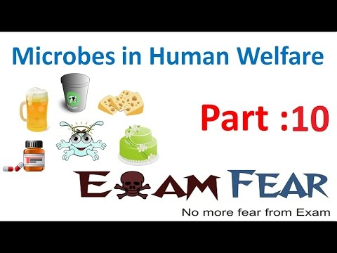 Biology Microbes in Human Welfare part 10 (Secondary Sewage Treatment) class 12 XII