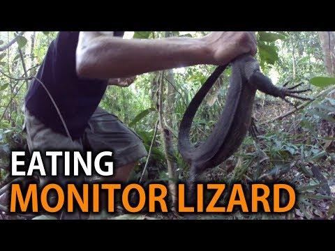 Hunting & Eating a Monitor Lizard