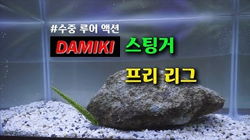 다미끼 스팅거 프리리그 수중 루어액션(DAMIKI STINGER FREE LEAGUE UNDERWATER LURE ACTION)