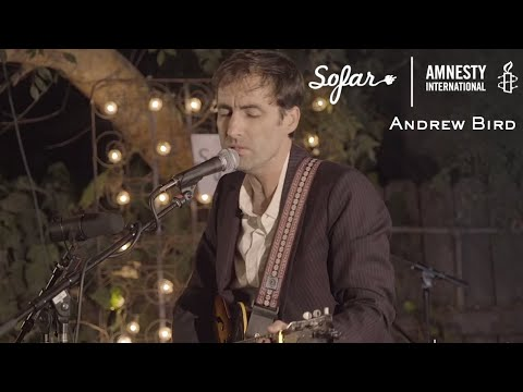 Andrew Bird - Plasticities | Sofar Los Angeles - GIVE A HOME 2017