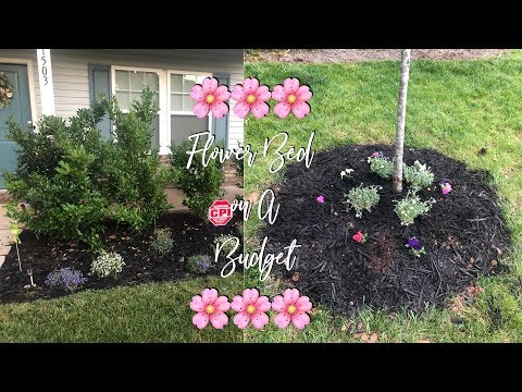 Gardening for Dummies..Flower Bed Makeover on a Budget!!!!!! 🌸🌺🌸