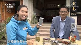 《远方的家》 20191119 长江行(73) 古老铜都焕新生| CCTV中文国际