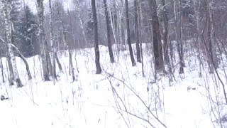 Деревня, катание на снегоходе YAMAHA(Не удачный был заезд в конце видео сломал ногу. Снегоход начал переворачиваться., 2016-01-27T23:20:39.000Z)